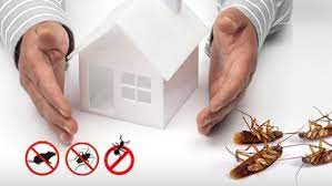 Finding The Best Residential Pest Control Services