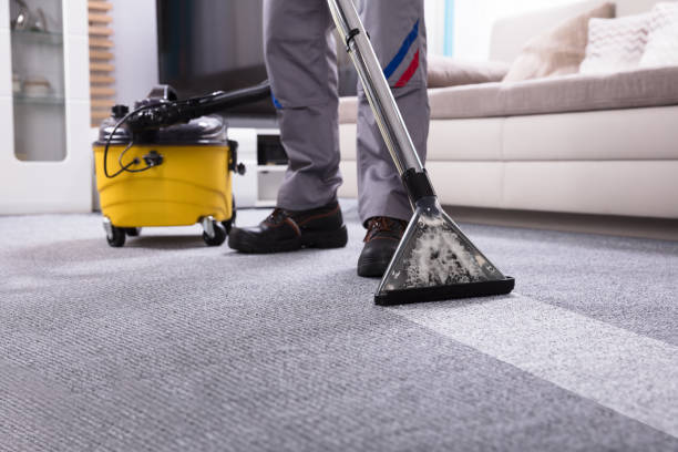 Why You Should Trust Professional Carpet Cleaning Solutions